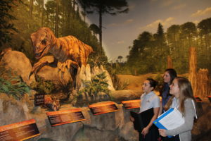 Dayspring Christian Academy students expore creation vs. evolution on a four-day field study.
