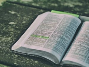 The bible is the primary textbook at Dayspring Christian Academy